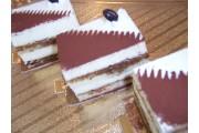 Cake_slice (tiramisu)