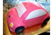 SP004_CAR5